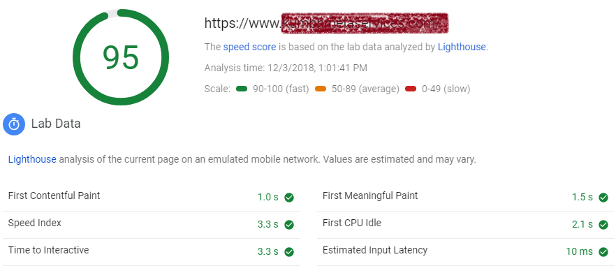 google-pagespeed-insight-report